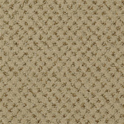Brant Point Dapper Tan 58509