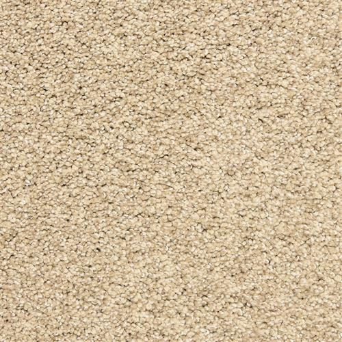 Rochelle in Buff - Carpet by The Dixie Group