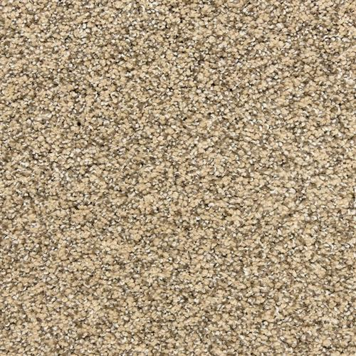 Rochelle in Chestnut - Carpet by The Dixie Group