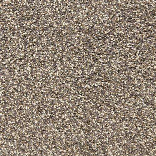 Rochelle in Quarry - Carpet by The Dixie Group