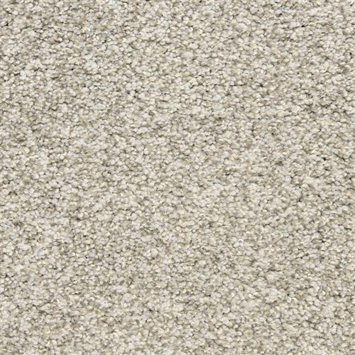Rochelle in Titanium - Carpet by The Dixie Group