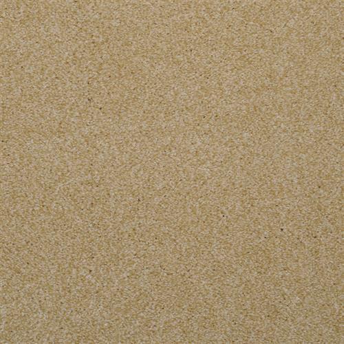 Enthralled Sand Dune 17504