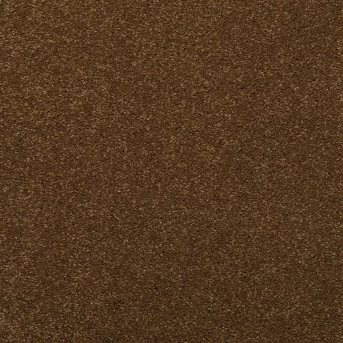 Enthralled Spice Trader 37500