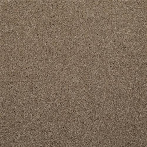 Enthralled Khaki Tone 77513