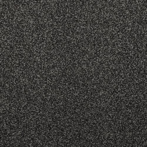 Enthralled Charcoal Grey 87523