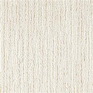 Carpet Advocate D011-13124 Elite