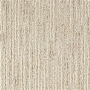 Carpet Advocate D011-23114 Premier