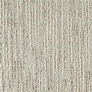 Carpet Advocate D011-33118 TopHonor