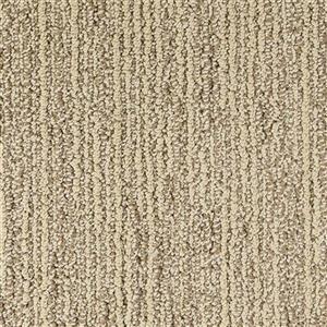 Carpet Advocate D011-33120 Champion