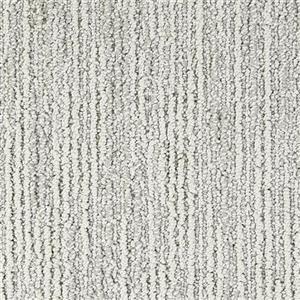 Carpet Advocate D011-51018 AwardWinner
