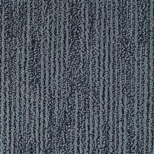 Carpet Advocate D011-61127 BlueRibbon