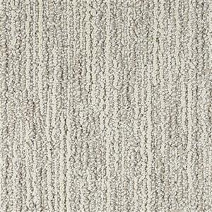 Carpet Advocate D011-83119 SilverMedal