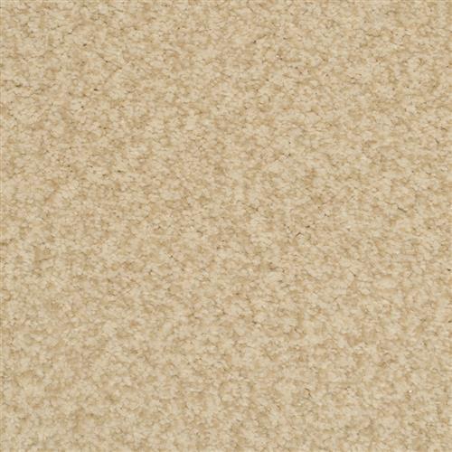 Semitones Birch 11406