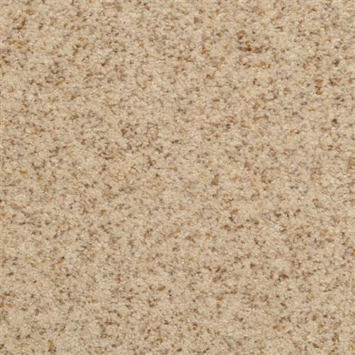 Semitones Parchment 13221