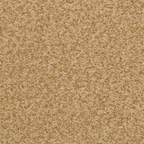 Semitones Cheetah 26411