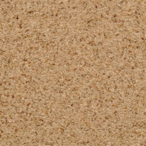 Semitones Tempura 35309