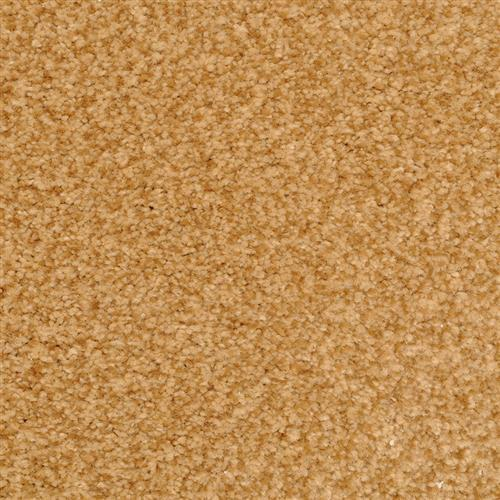 Semitones Copper 96903