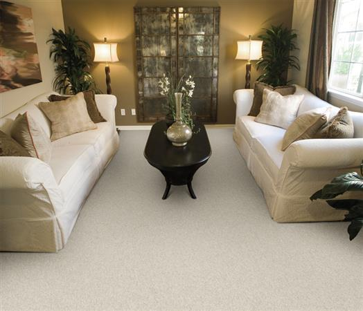 Morning Mist in Tenor - Carpet by The Dixie Group