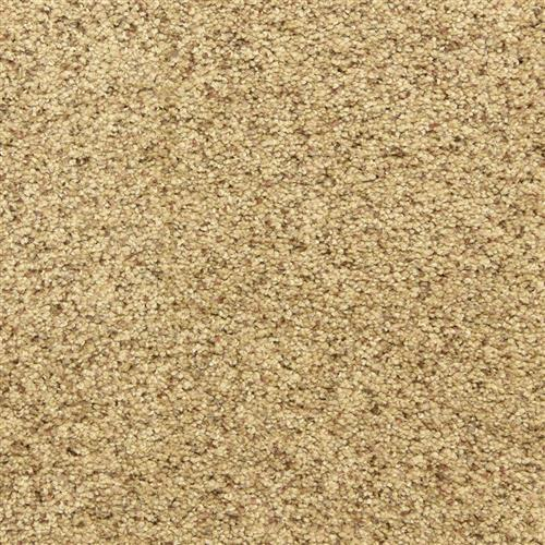 Maroon Bells in Pepper Spice - Carpet by The Dixie Group