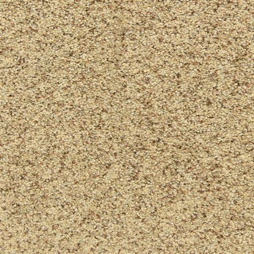 Maroon Bells in Oatmeal Raisin - Carpet by The Dixie Group