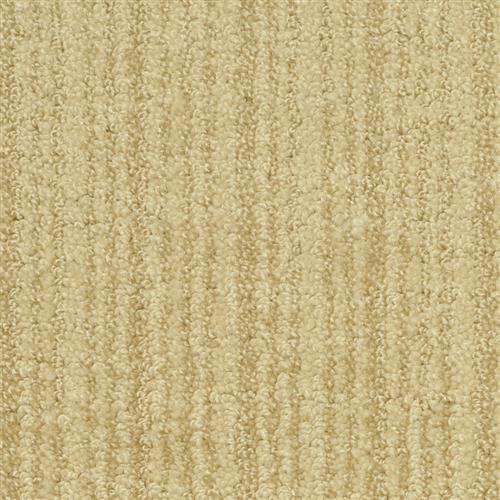 Cypress Elm 15703