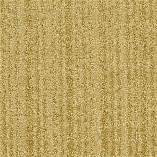 Cypress Spruce 17804