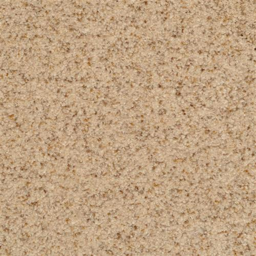 Chromatic Touch Oatmeal 25217