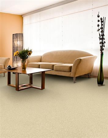 Soft & Silky in Overjoy - Carpet by The Dixie Group