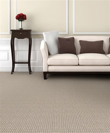 Dixie Home Steadfast Cream Puff Carpet Denver Co Emw