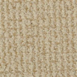 Carpet BostonCommon 4500 Nutria