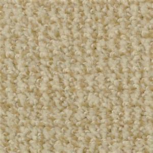 Carpet BostonCommon 4500 Curry