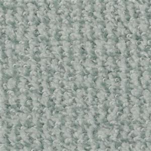 Carpet BostonCommon 4500 Clarity