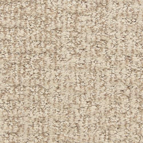 Aspects in Insightful - Carpet by The Dixie Group