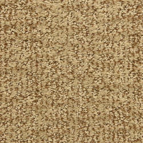 Aspects in Avenue - Carpet by The Dixie Group