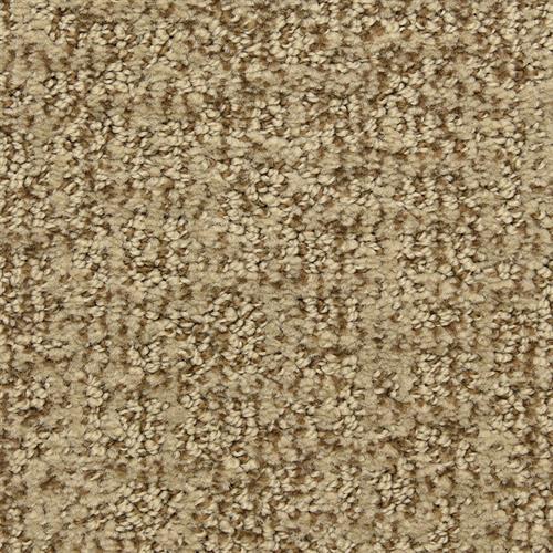 Sandbark