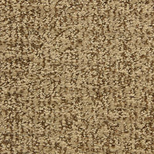 Aspects in Fedora - Carpet by The Dixie Group