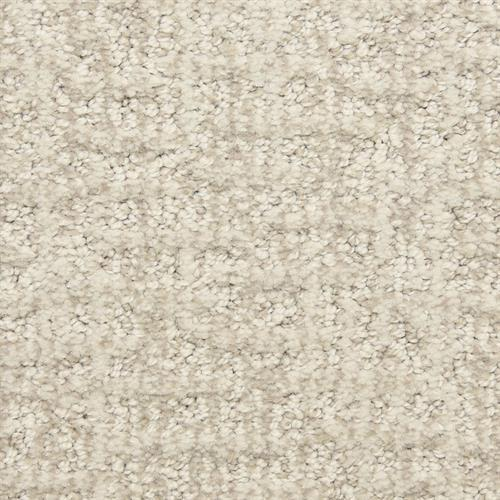 Aspects in Reserved - Carpet by The Dixie Group
