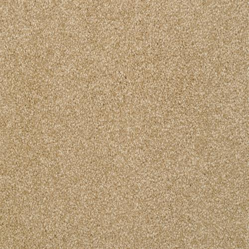 Alluring in Rawhide - Carpet by The Dixie Group