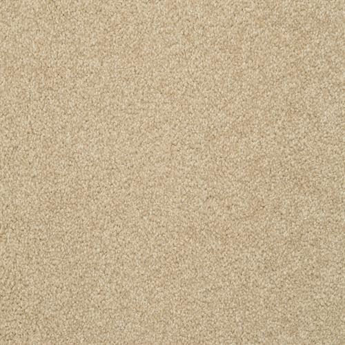 Carpet Alluring Suede  main image