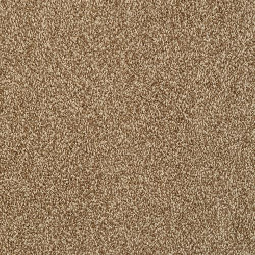 Dixie Home Alluring Driftwood Carpet Coralville Ia