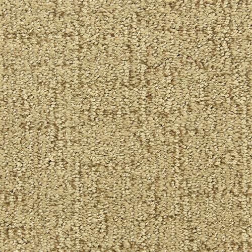 Victor in Accolade - Carpet by The Dixie Group