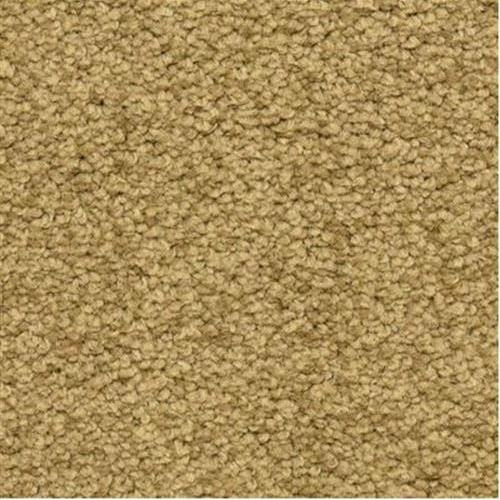 Cassina in Granola - Carpet by The Dixie Group