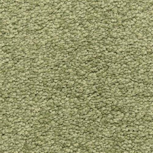 Cassina in Bay Leaf - Carpet by The Dixie Group