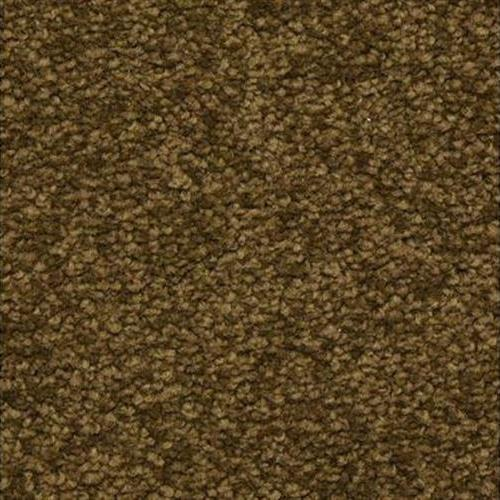 Cassina in Chickery - Carpet by The Dixie Group