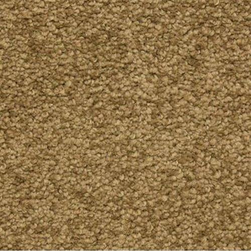 Cassina in Chestnut - Carpet by The Dixie Group