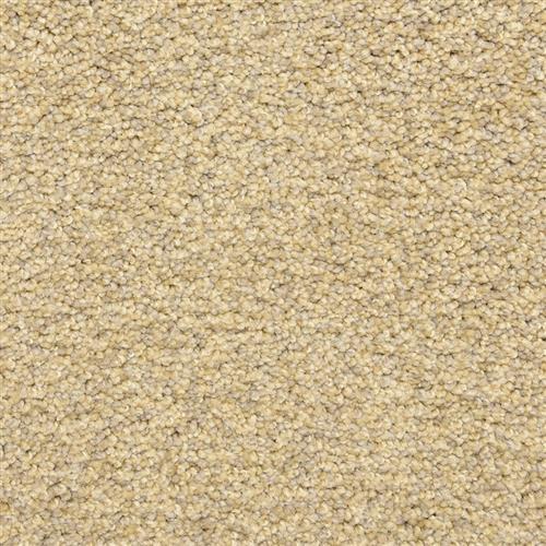 Color Festival Sand Storm