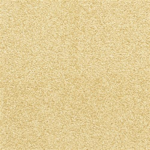 Leigh Way in Suede - Carpet by The Dixie Group