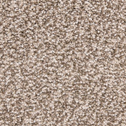Leigh Way in Laid Back - Carpet by The Dixie Group