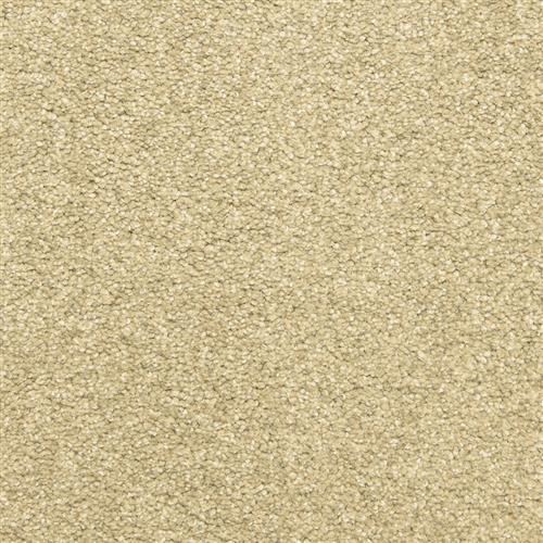 Leigh Way in Touch Of Grey - Carpet by The Dixie Group