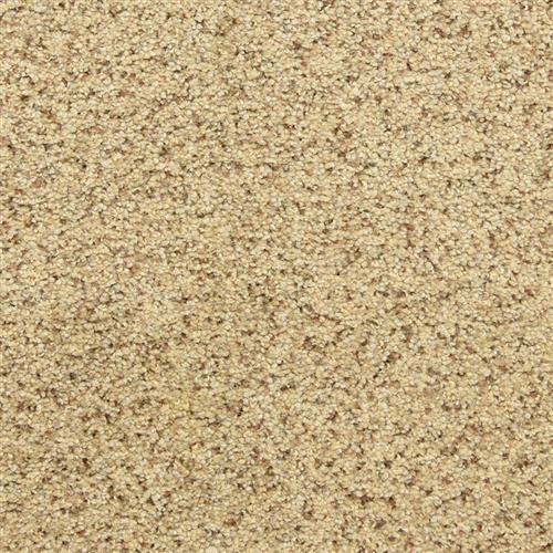 Leigh Way in Oatmeal Raisin - Carpet by The Dixie Group